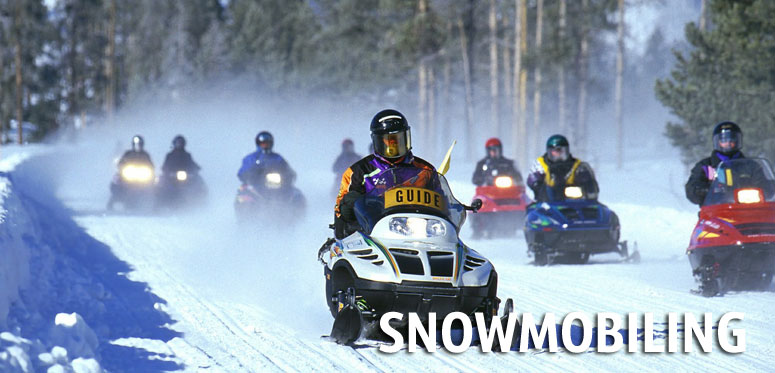 Vermont Snowmobile Links